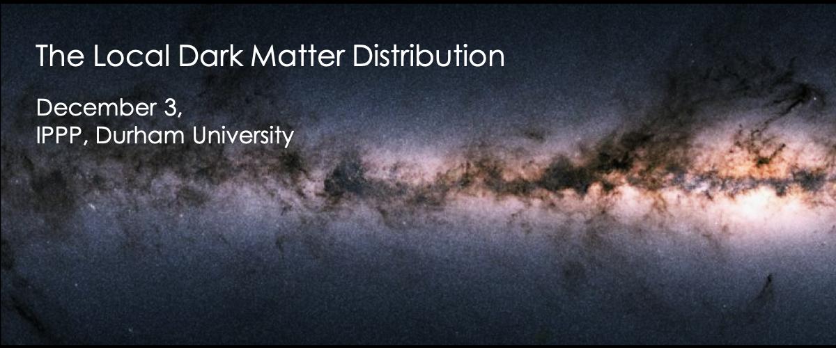 The Local Dark Matter Distributuion