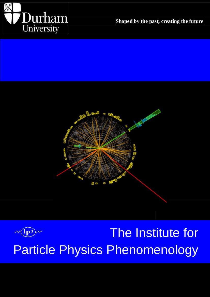 IPPP_brochure